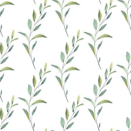 Hand drawn greenery leaves branch watercolor digital paper. Reklamní fotografie