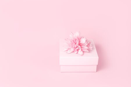 Feminine candy pink gift box with flower bow on top. Passion, love and feelings St Valentines Mothers Womens Day celebration monochromatic concept with copy space