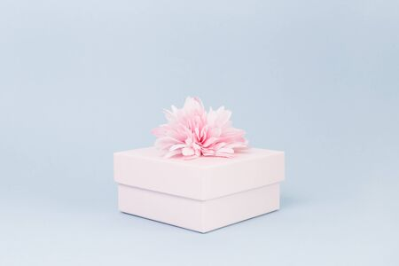 Feminine candy pink gift box with flower bow on top on pastel blue. Passion, love and feelings St Valentines Mothers Womens Day celebration monochromatic concept with copy space Фото со стока