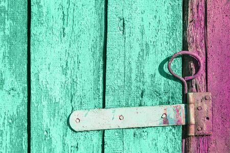 Green trendy pastel and grape pink grunge wooden door with old rusted latch background texture with old cracked peeling off paint