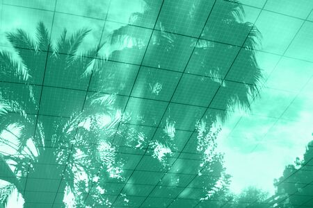 Palm trees reflections in the pool water in shades of green color , background