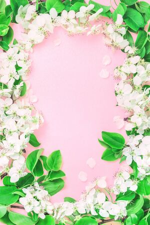 Spring summer festive blooming with white flowers fruit tree branches and yellow frame border on pink. Fresh floral flat lay with copy space