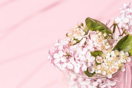 Assorted lilac and spring flowers in bloom in glass vase on pink background with copy space and shadow. Birthday celebration or wedding invitation card. Spring summer concept. Banco de Imagens