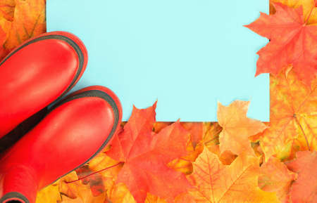 Autumn leaves frame with red rubber boots and blue background. Fall foliage banner. Weather forecast, rain. Bright orange and red maple tree leaves. Copy space on blue Archivio Fotografico