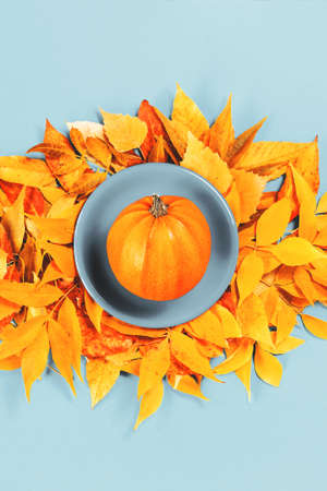 One ripe pumpkin on blue plate and bright orange autumn leaves flat lay. Thanksgiving, fall harvest time or halloween season concept with copy space. Stock fotó