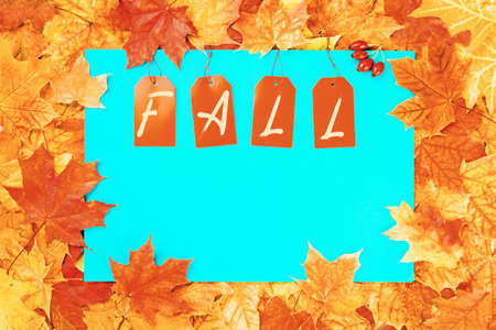 Fall text on price tags on blue with maple leaves background. Autumn seasonal sale. Copy space