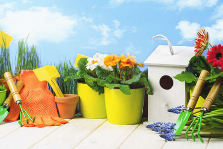 Gardening tools and flower pots with blooming plants on white wooden terrace in the garden. Spring or summer concept. Spring cleaning and housework. Birdhouse nest box. Copy space