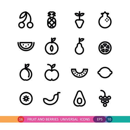 universal icons: fruit and berries  universal icons