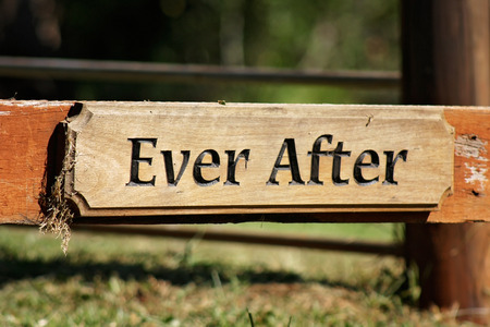 ever: rustic ever after wooden sign