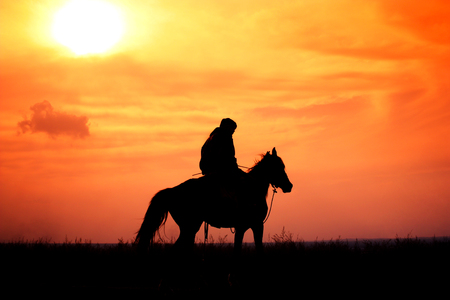 rider on horseback in a steppe during colorful sunset, Kazakhstan