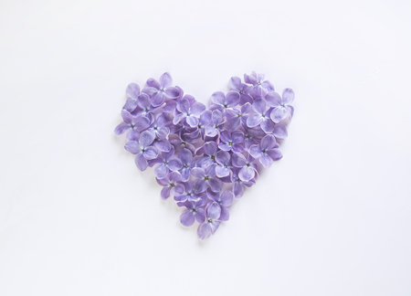 Heart shaped flowers of lilac isolated on a white bachground.