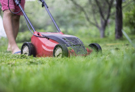A man cutting the grass with a lawn mower Banque d'images