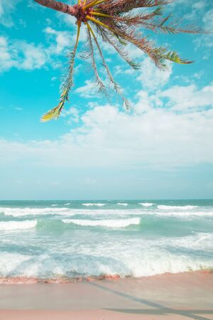 Pink and blue colours, waves on the sand beach and palm tree above Stock fotó