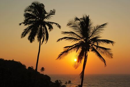 Beautiful sunset over the sea and silhouette of palm trees in Goa, India