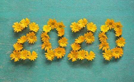 New year 2020 made of yellow flowers on the blue background.