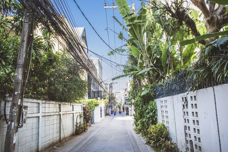 Narrow street with tropical plants and wires in Bangkok city, Thailand