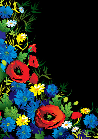 flowers vector illustration on the black background Vector