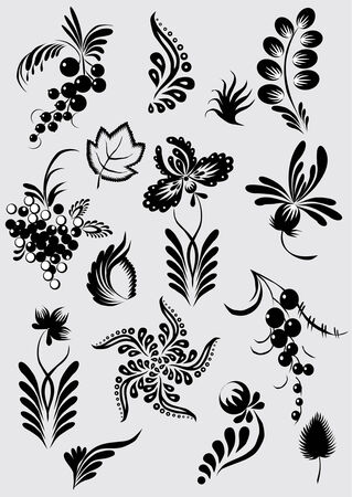 black currants: floral collection Illustration