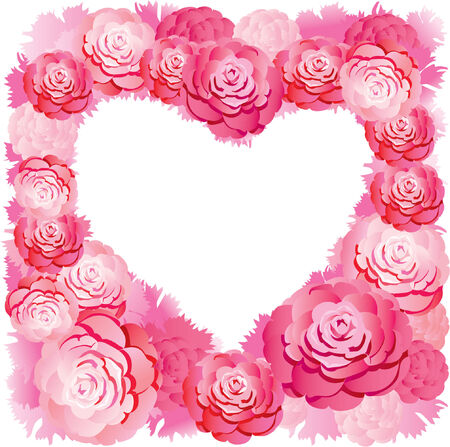 beautiful vector pink roses Vector
