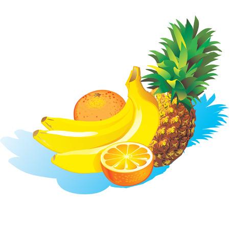 Pineapple, bananas and orange Stock Vector - 4908605