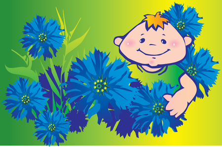 cornflowers: Happy boy in cornflowers Illustration
