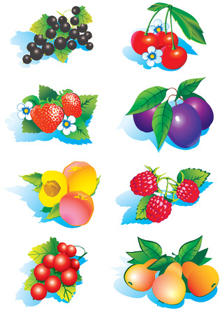 Juicy fruits 2 Vector
