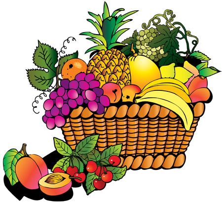 Beautiful fruits with basket. Salubrious food.