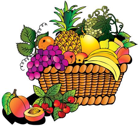 canasta de frutas: Hermosos frutos con cesta. Salubridad de los alimentos.