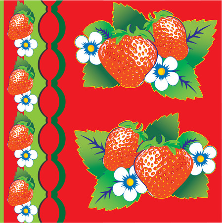 Strawberries on red background Vector