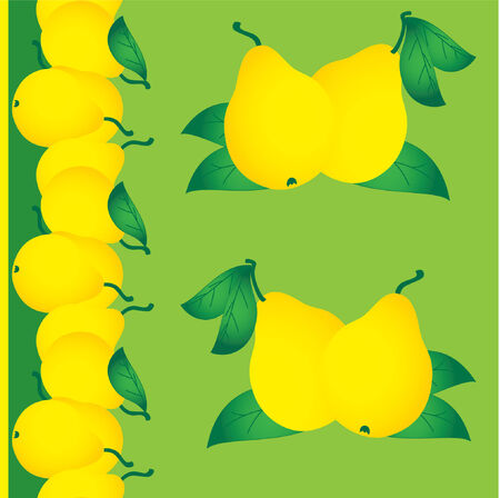 Group of fresh ripe pears Vector