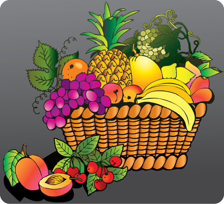 Beautiful juicy fruits with basket on a grey background. Healthy food. Vector art-illustration. Vector