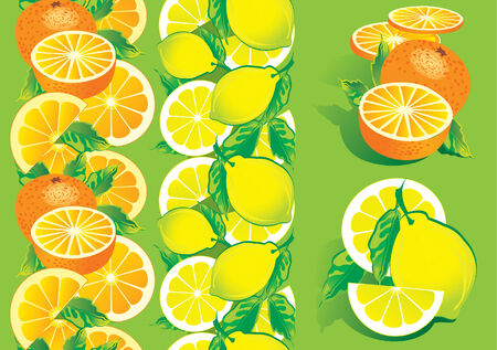 Juicy citrus on a green background. Healthy food. Vector art-illustration. Vector