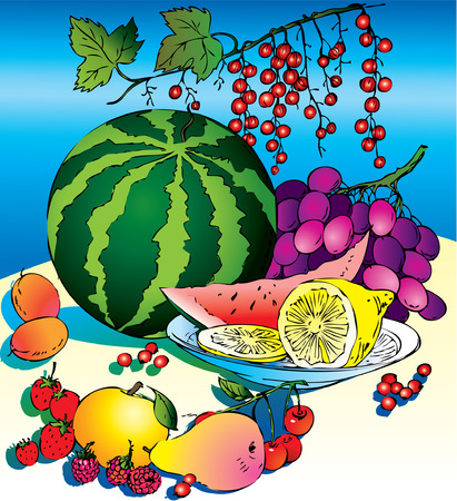 summer diet: Beautiful fruits collection on a table. Healthy food. Vector art-illustration.