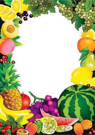 fruited: Beautiful fruits frame and sample text. Healthy food. Vector art-illustration.
