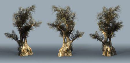 Trees on a grey background. 3D art-illustration. illustration