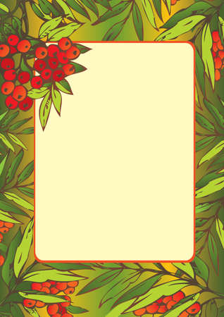 verdant: Beautiful frame with Rowan leaves. Place for sample text. Vector art-illustration.