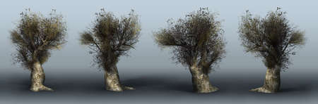 Trees on a grey background. 3D art-illustration. Stock Illustration - 6015169