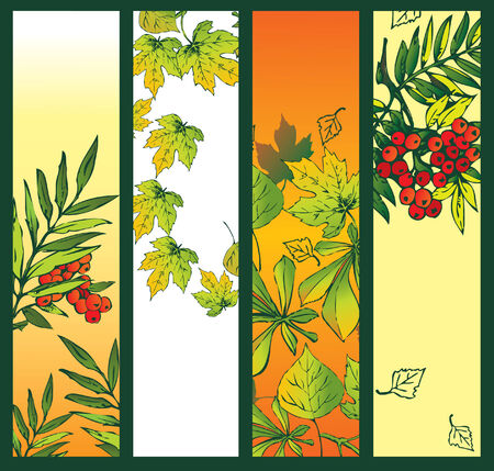 Autumn banner with foliage. Place for sample text. Vector art-illustration. Vector