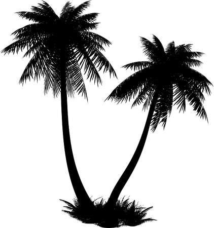 Silhouette of palms on a dark blue background. Bit-mapped art-illustration.