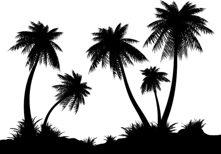 Silhouettes of palms on a white background. Bit-mapped art-illustration.