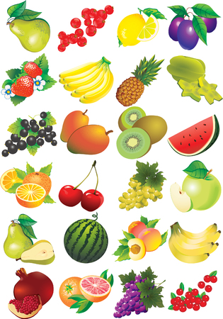 Various juicy fruits on a white background.  Healthy food. Vector art-illustration. Illustration