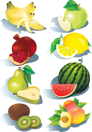 fruited: Various juicy fruits on a white background.  Healthy food. Vector art-illustration. Illustration