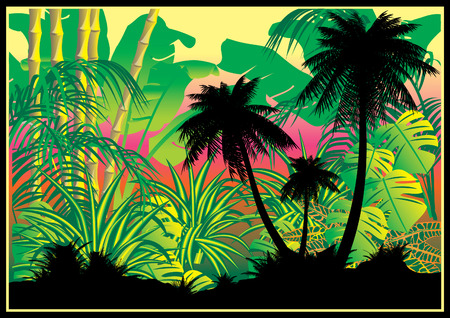 Silhouettes of palms on a jungle background.Vector art-illustration. Vector