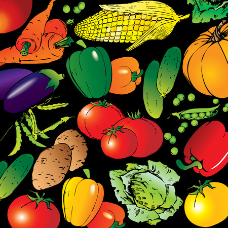 Collection of different vegetables on a black background. art-illustration. Stock Vector - 6568424