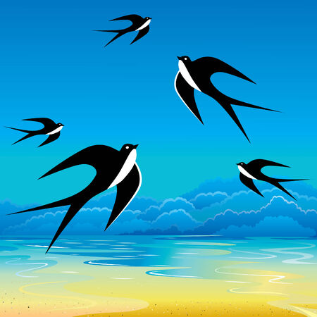 water birds: Swallow flying to sky. art-illustration. Illustration