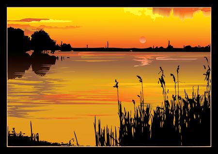sea grass: A beautiful sunset on the river. art-illustration.