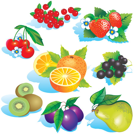 fruited: Various juicy fruits on a white background.  art-illustration.