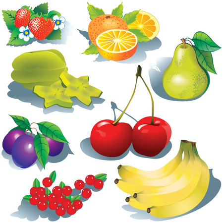 Fruits on a white background.  art-illustration. Stock Vector - 7158123