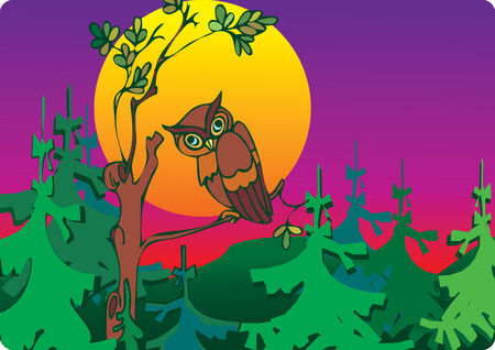 bird of prey: Owl  in woods. Place for your text.  art-illustration. Illustration