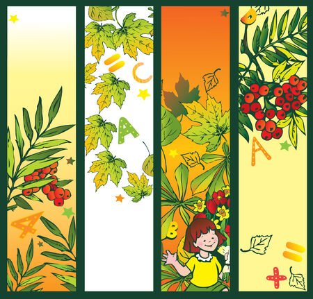 Autumn banner with foliage. Set of back to school. Place for your text. Vector art-illustration. Vector